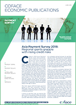 Asia-Payment-Survey-2018-Regional-giants-grapple-with-rising-credit-risks